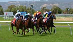 horse-racing-358907_960_720-1-min-1